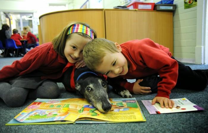 taller-lectura-perros-niños-culturabadajoz