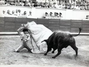 luis-reina-toros-culturabadajoz