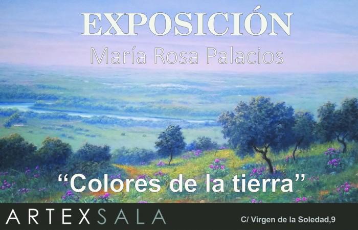 expo-rosa-palacios.aertex-culturabadajoz