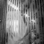 El camarero exparaca del Ciriaco