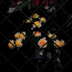 Flores de plástico en un escaparate. oto