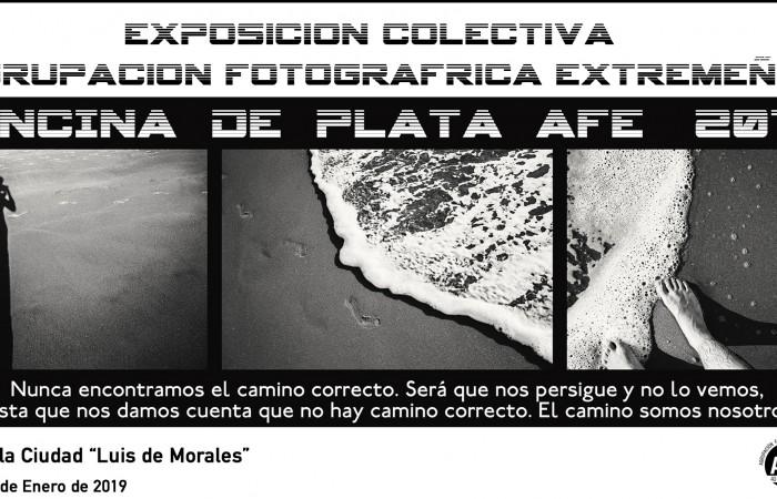 Cartel Exp.Encina de Plata 1
