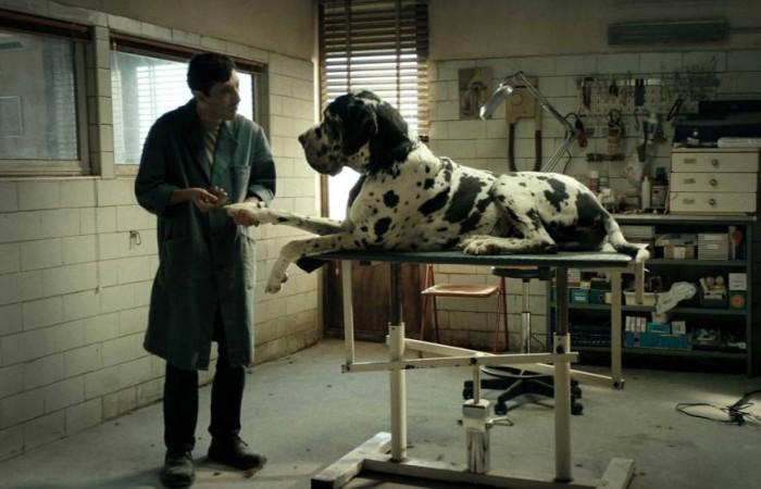 dogman-culba