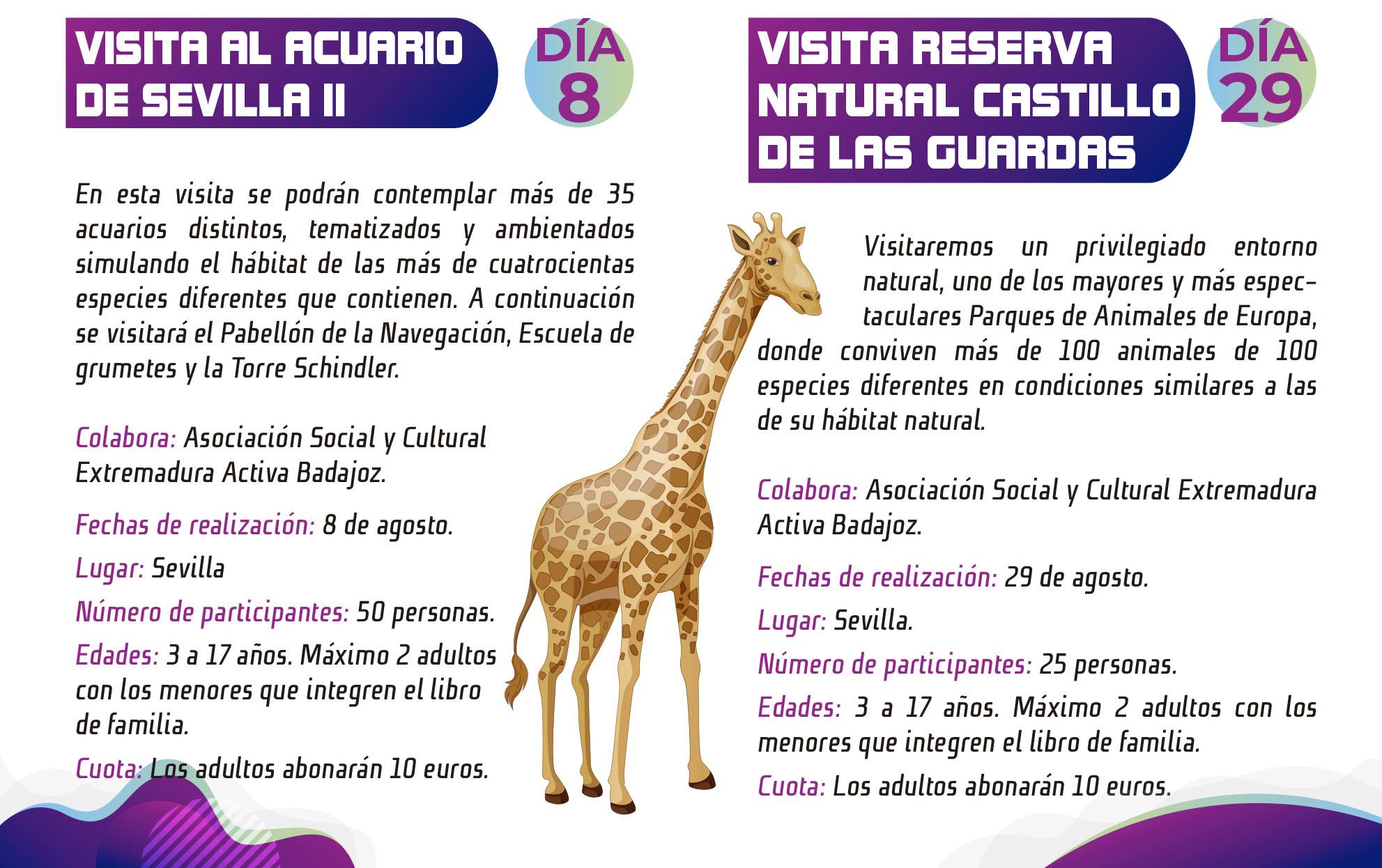 programa_vive_el_verano_en_badajoz_2020 (1)-5